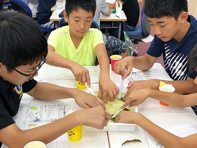 グループで学習する子ども